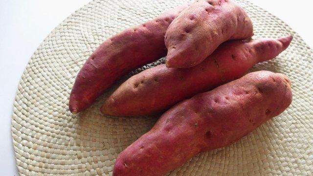 サツマイモの種まき〜収穫までの育て方!栽培時期や病気・害虫の対策!