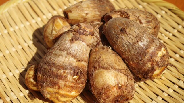 里芋の種芋〜収穫までの育て方!栽培時期や芽出し・土作りの方法など