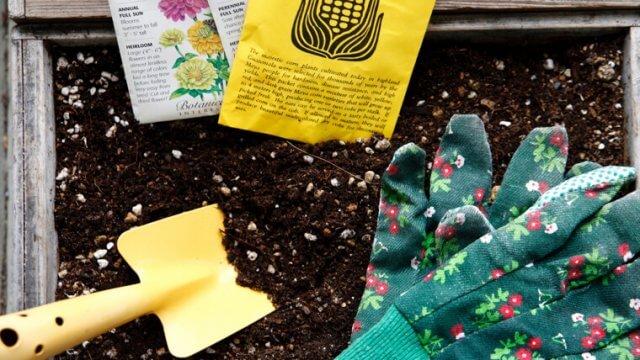 肥料の種類とは?肥料の3要素などもご紹介!