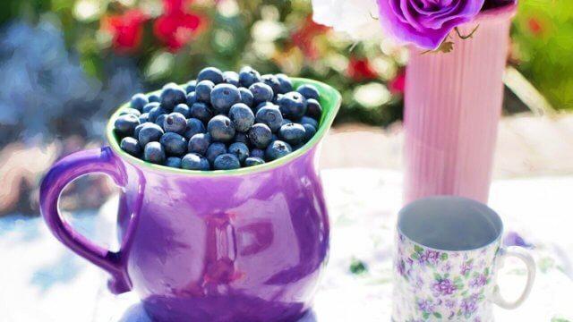 ブルーベリーの賞味期限と保存方法