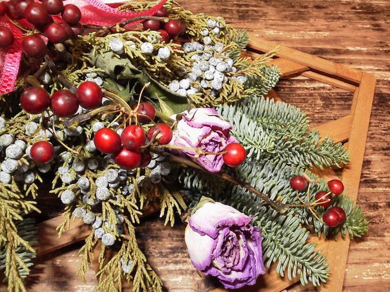 サンキライ(山帰来)の育て方〜クリスマスリースなどでお馴染みの赤い実の育て方を解説!