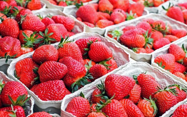 いちごの旬の時期や保存方法・新鮮ないちごの選び方を解説!