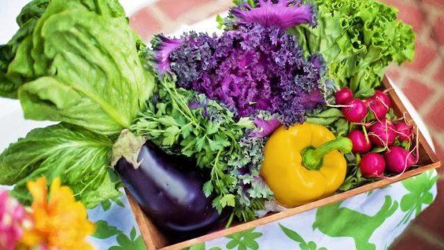 野菜の通販サイトを比較!それぞれの特徴をご紹介!