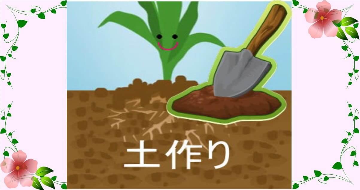 アイキャッチ画像 土作り