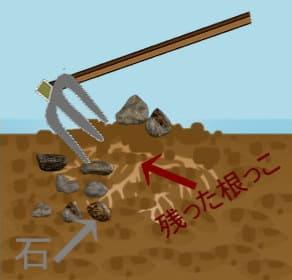 備中鍬で石や残った根を取り除く