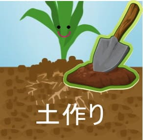 土作りの基本