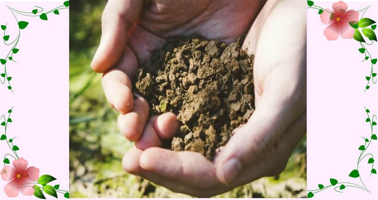 アイキャッチ画像 土の処分と土のリサイクル
