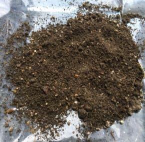 土を広げて乾燥させている画像